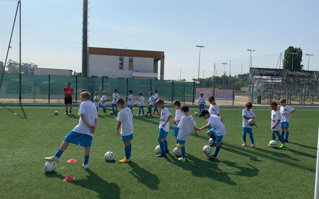 Scuola Calcio, il punto a metà stagione del vicepresidente Tinozzi